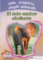 Il mio amico elefante